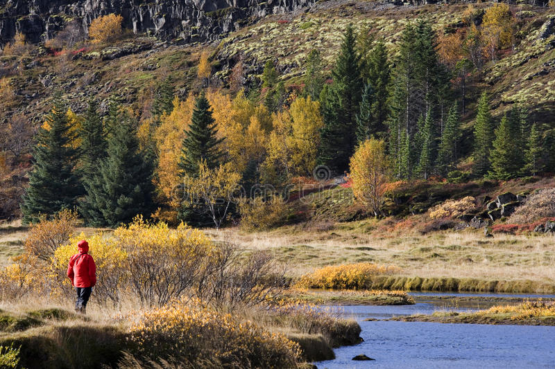 Download Autumn Colors - Thingvellar - Iceland Stock Image - Image: 22465391