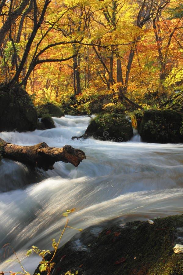 Autumn Colors von Oirase-Fluss lizenzfreie stockfotografie