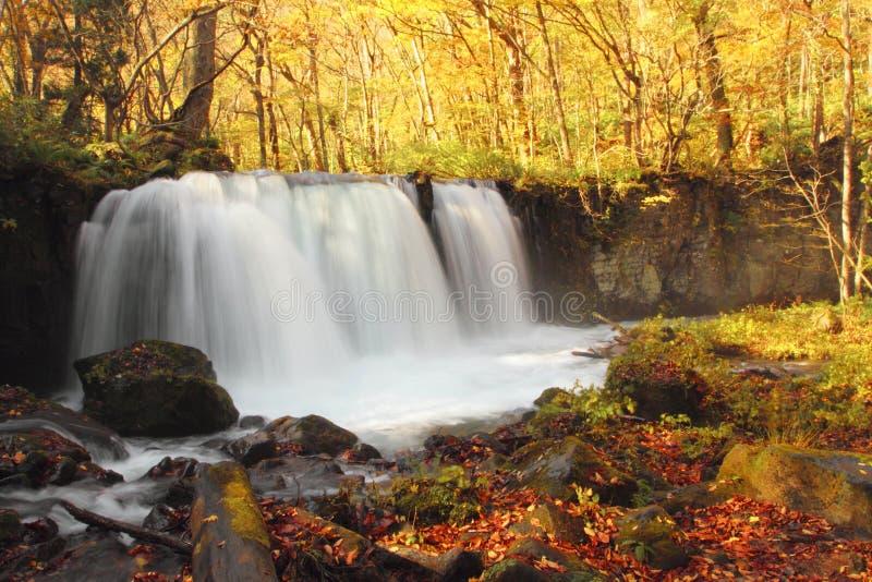 Autumn Colors von Oirase-Fluss lizenzfreies stockfoto