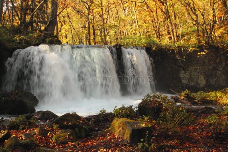 Autumn Colors von Oirase-Fluss stockbilder