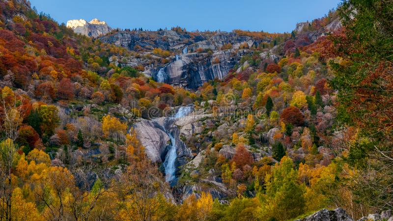 Autumn in the forest with waterfall stock images
