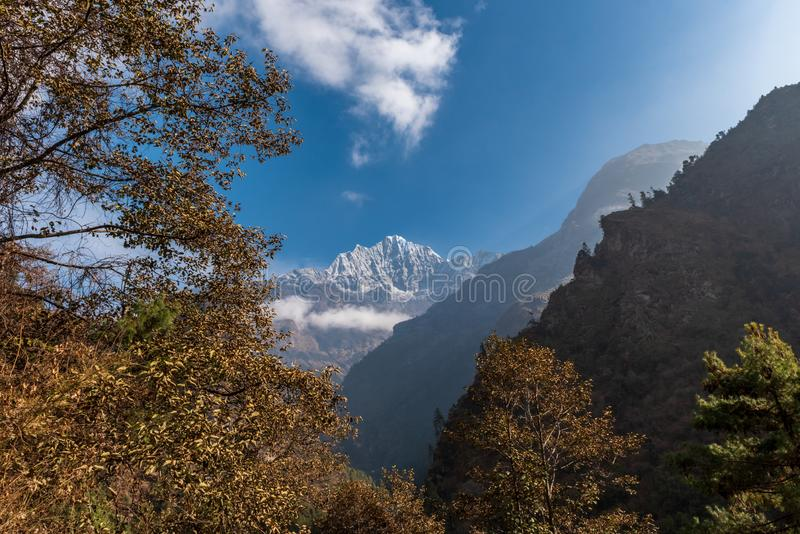 Autumn coloured trees and a Himalayan mountain stock image