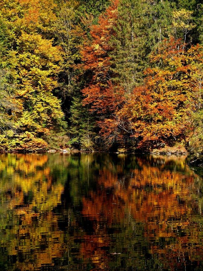 Autumn Colours photos libres de droits