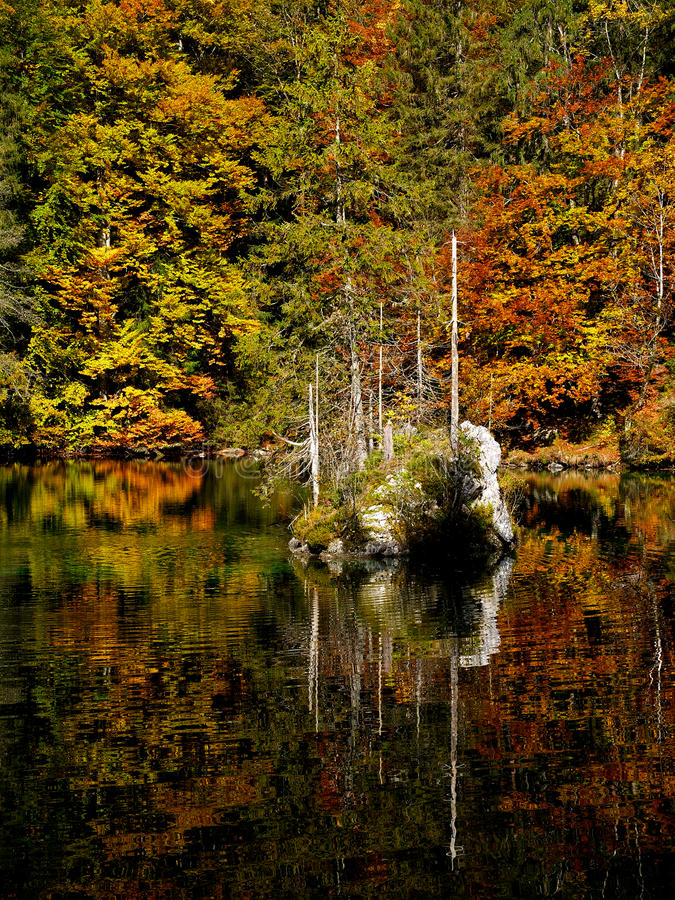 Autumn Colours images libres de droits