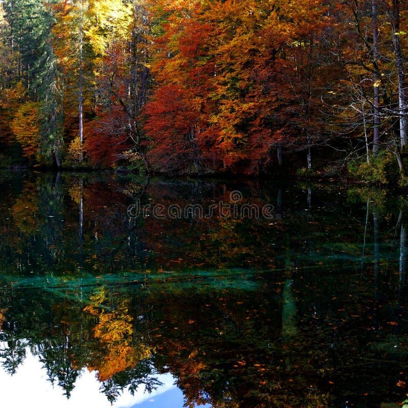 Autumn Colours photographie stock