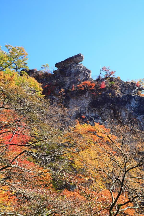 Download Autumn colours of crag stock image. Image of nature, colours - 36653257