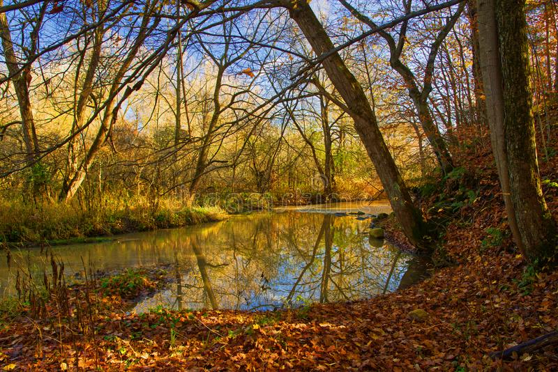 Autumn Colours lungo un fiume del sud di Ontario immagini stock libere da diritti