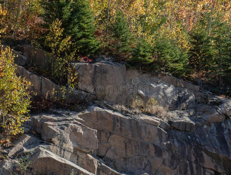 Autumn colours and Muskoka Granite Rock. Beautiful autumn hues in mixed forest growth on a section of Muskoka granite rock stock photos