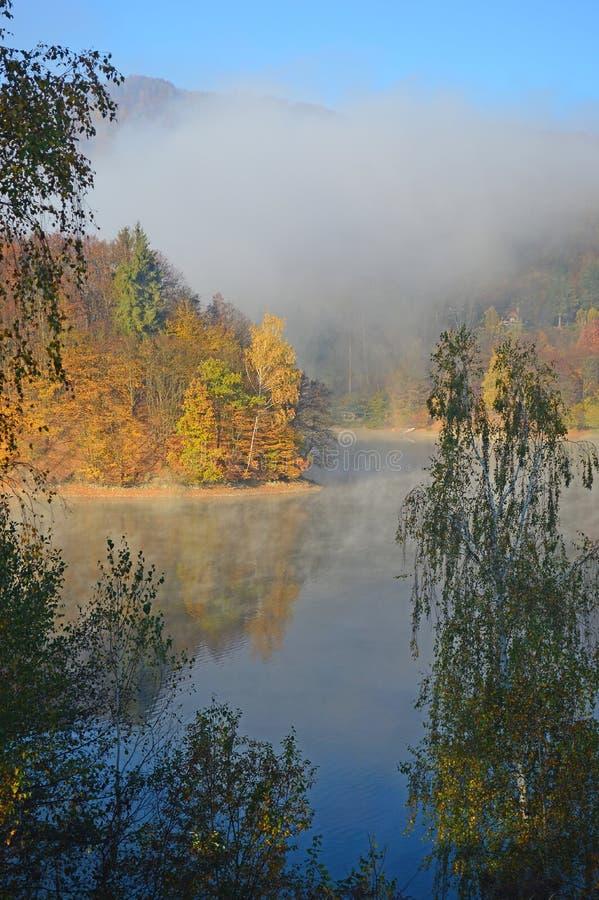 Autumn Colours - nebelhafter Morgen lizenzfreie stockfotos