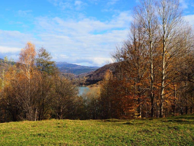 Autumn colours in Romania stock image
