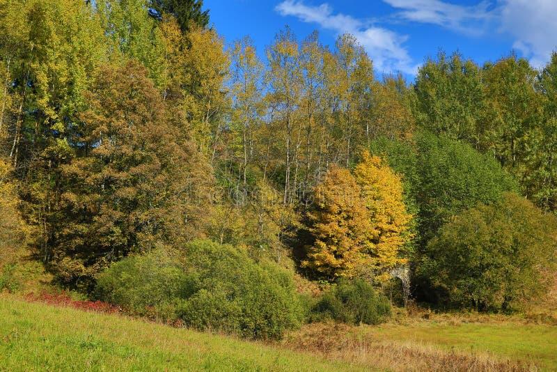 Download Autumn Colours, Zelezna Ruda, Boemerwald, Sumava Czech Republic Stock Photo - Image: 34469752
