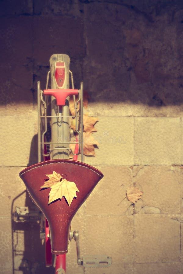 Free Autumn Comes Bike Royalty Free Stock Photos - 61131478