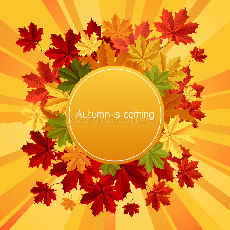 Autumn is coming vector illustration