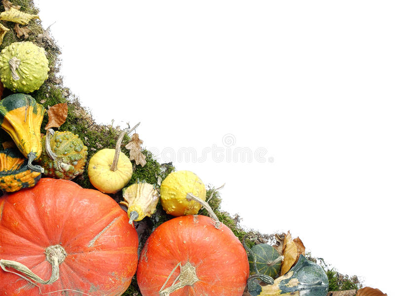 Download Autumn Composition Stock Photo - Image: 27461790