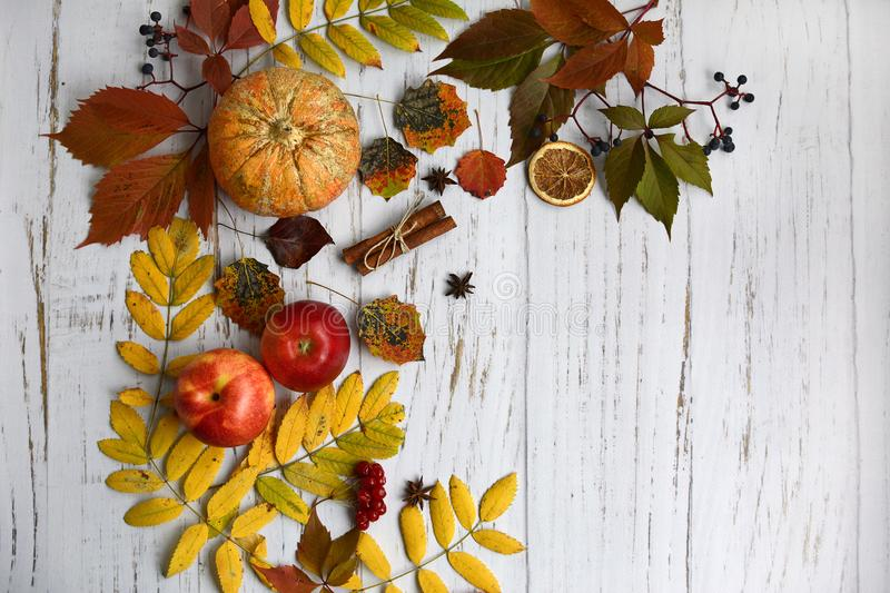 Autumn composition of apples, pumpkins, leaves and cinnamon sticks on a light wooden background royalty free stock photo