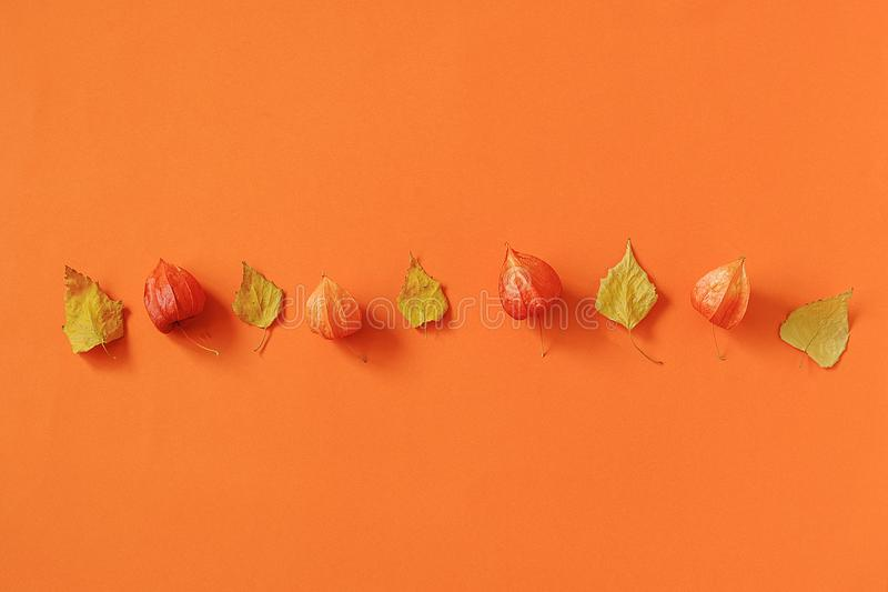 Autumn composition. Bright autumn leaves herbarium on orange paper background. Creative Top view Flat lay Copy space. Template for royalty free stock photo