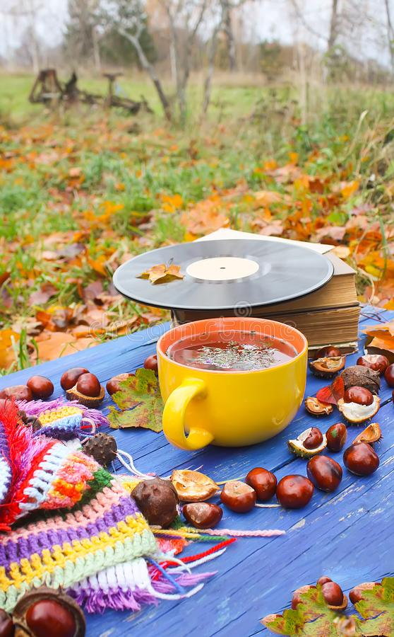 Autumn composition of ceramic cup of herbal tea and vintage vinyl records on aged wooden background with bright handmade crocheted. Autumn composition of yellow royalty free stock photography