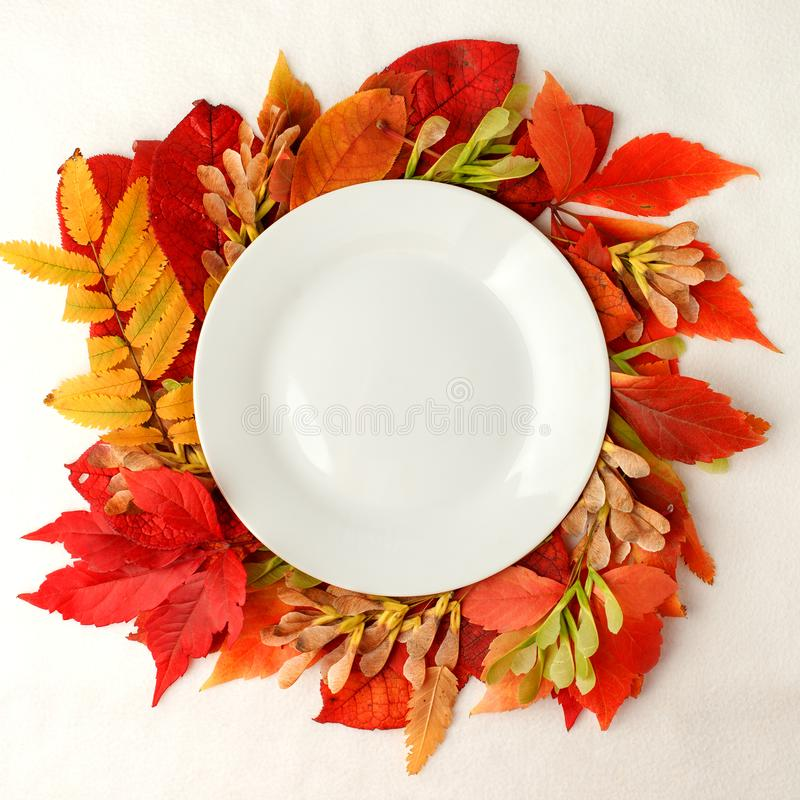 Autumn composition concept background. Autumn bright leaves. Flatlay background, Thanksgiving table, empty plate, seasonal concept royalty free stock image