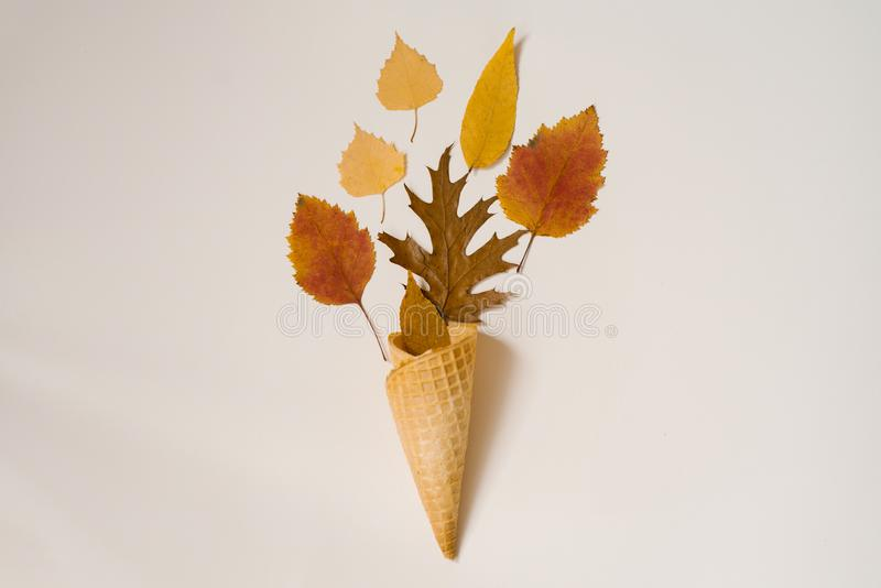 Autumn composition. Cone of waffle ice cream with dry yellowed and red leaves on beige background. Autumn background and concept. stock photography