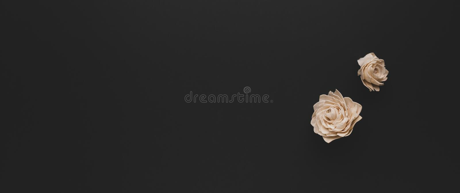 Autumn composition with dried white roses on dark background. Flat lay copy space royalty free stock images