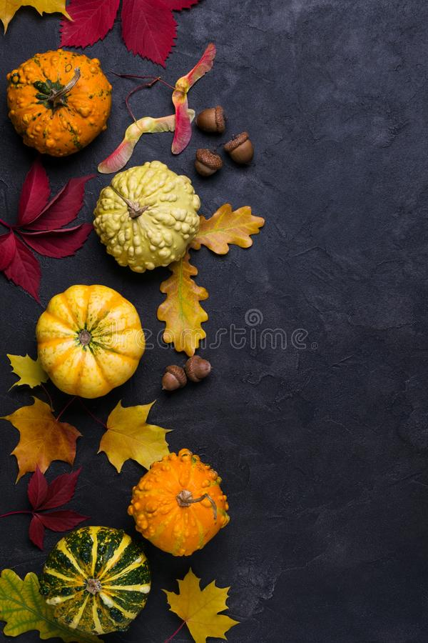 Autumn composition. Frame made of different multicolor dried leaves and pumpkin on dark background. Autumn, fall concept. Flat lay royalty free stock photos