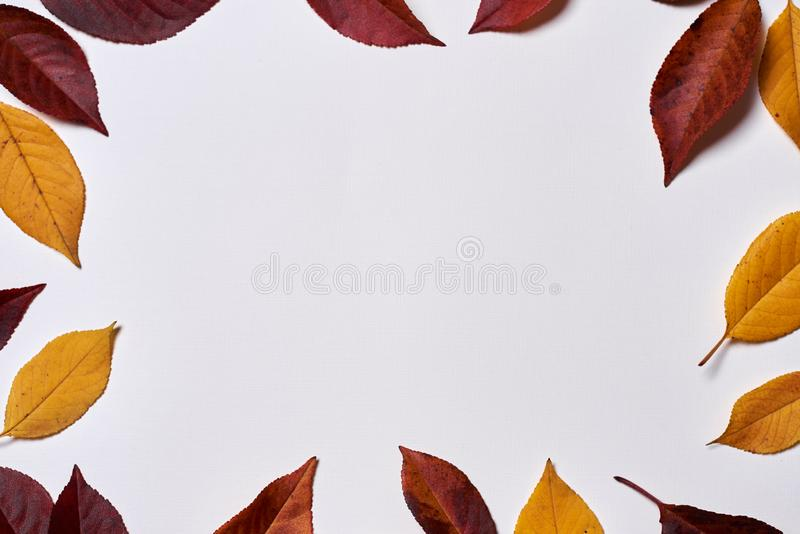 Autumn composition. Frame made of yellow and red leaves on white background. Fall concept. Autumn thanksgiving texture. Flat lay. Autumn composition. Frame made vector illustration