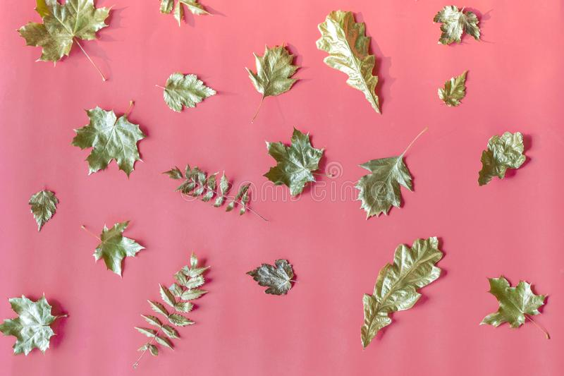 Autumn composition of gold creative dried leaves maple, oak, mountain ash, aspen leaves on pink  background. Flat lay, top view, royalty free stock images