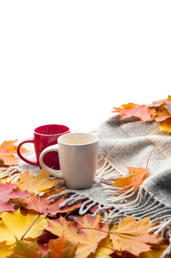 Hot coffee on wool plaid with autumn leaves, seasonal relax concept royalty free stock photos