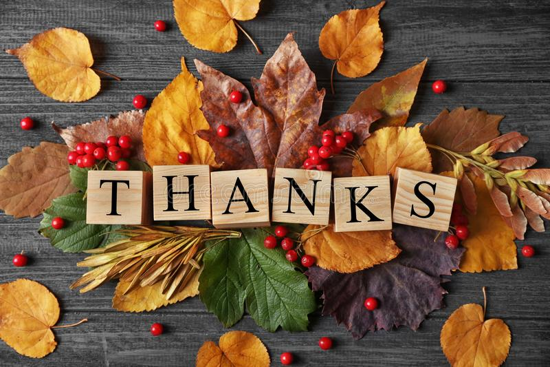 Autumn composition with leaves, berries, cubes and word THANKS on wooden background. Thanksgiving day concept royalty free stock photography