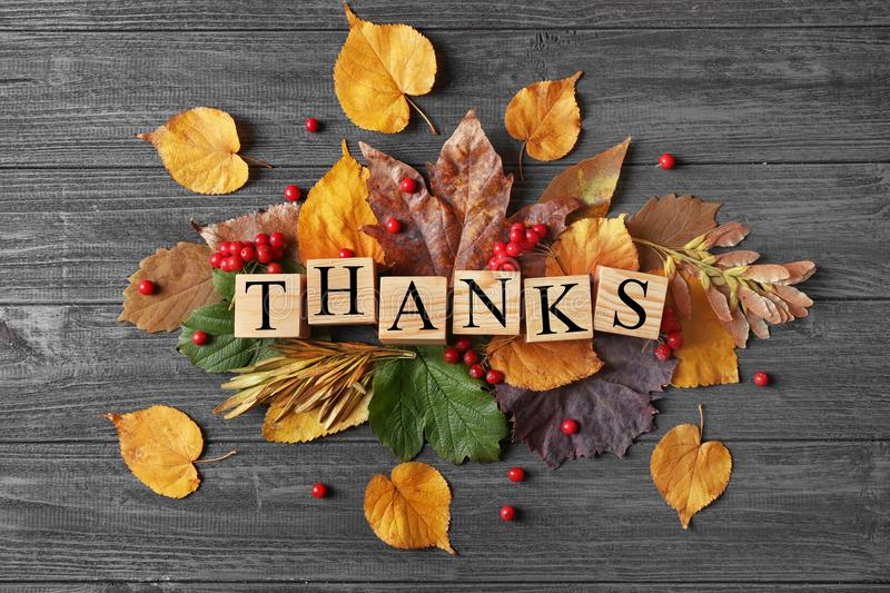 Autumn composition with leaves, berries, cubes and word THANKS on wooden background. Thanksgiving day concept royalty free stock photos