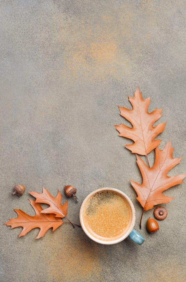 Autumn Composition med koppen kaffe och Autumn Leaves på sten- eller betongbakgrund arkivbild