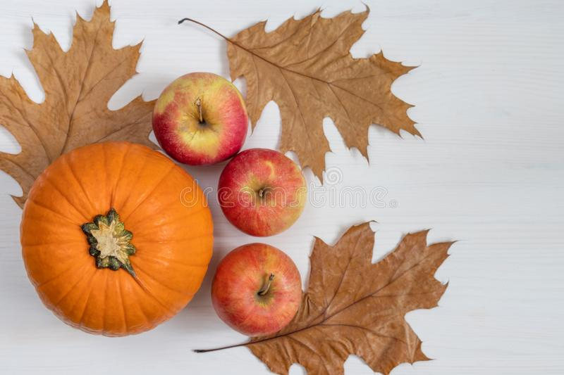 Autumn composition. Pumpkin, dry leaves, apples on a white wooden background. Autumn thanksgiving day background stock image