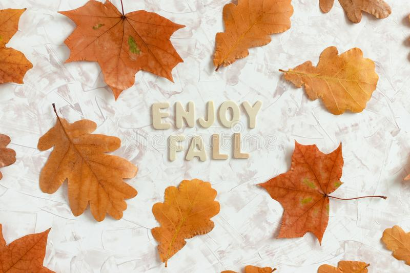 Autumn composition with quote Enjoy fall made from wooden letters stock photos