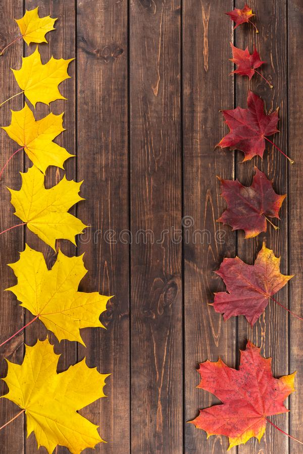 Autumn composition. Red and yellow maple leaves in two rows from small to large as frame on dark wooden brown background. stock photo