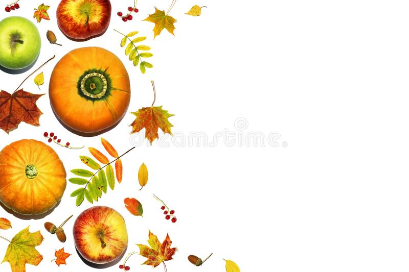 Autumn composition. Seasonal fruits and vegetables with fall leaves, berries and acorns. Autumn background with pumpkins and apple. Autumn composition. Seasonal royalty free illustration