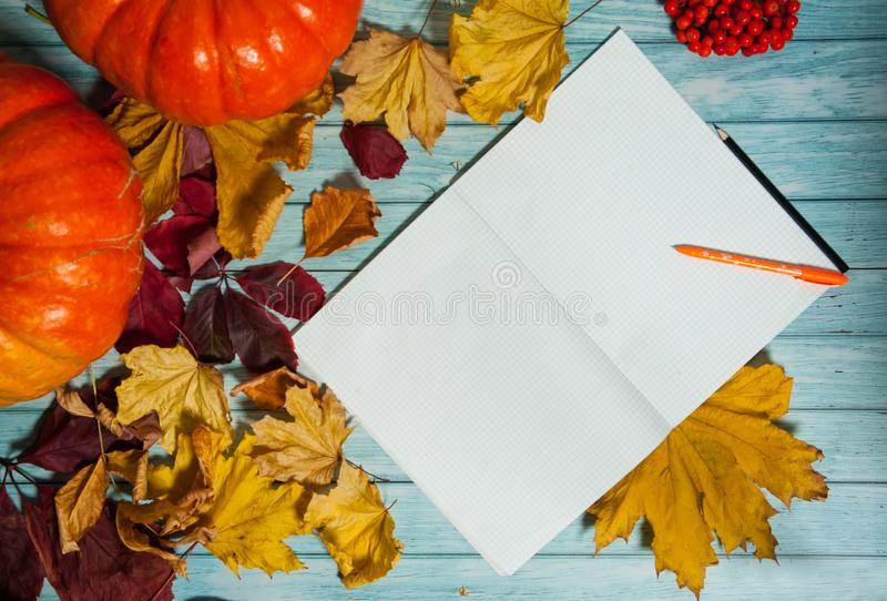 Two orange pumpkins, an open notepad, pen and pencil, colorful leaves and Rowan berries on a light blue wooden background. royalty free stock photo