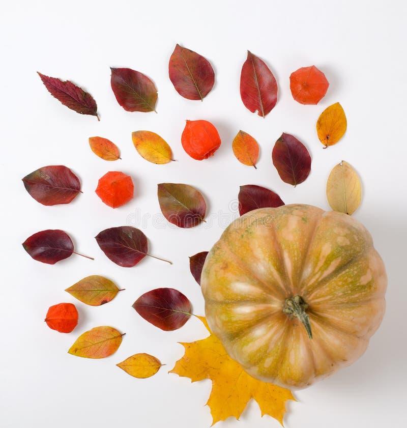 Autumn Composition van trillende rode en gele bladeren en oranje pompoen op een witte achtergrond Vlak leg hoogste mening royalty-vrije stock afbeeldingen