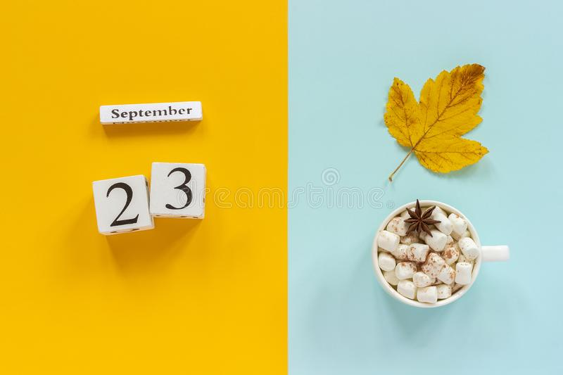 Autumn composition. Wooden calendar September 23, cup of cocoa with marshmallows and yellow autumn leaves on yellow blue royalty free stock photos