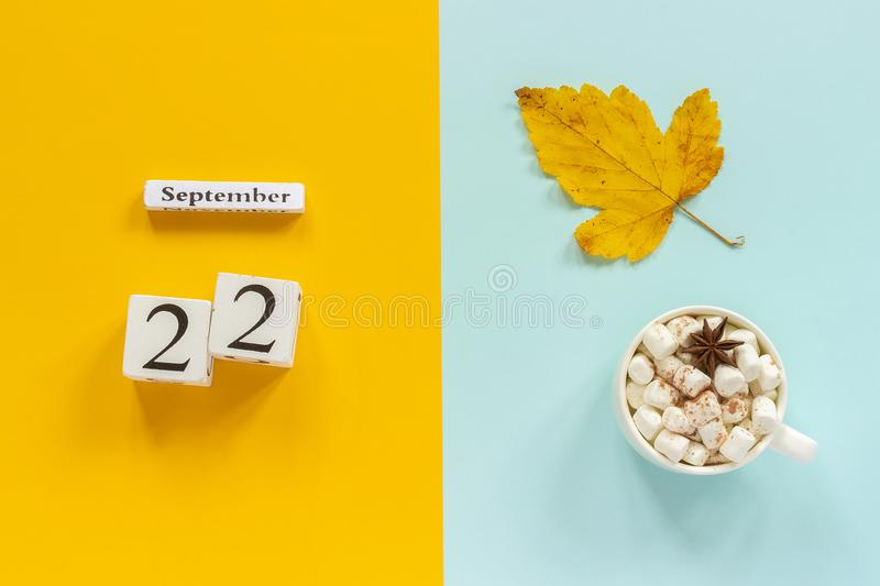 Autumn composition. Wooden calendar September 22, cup of cocoa with marshmallows and yellow autumn leaves on yellow blue stock images