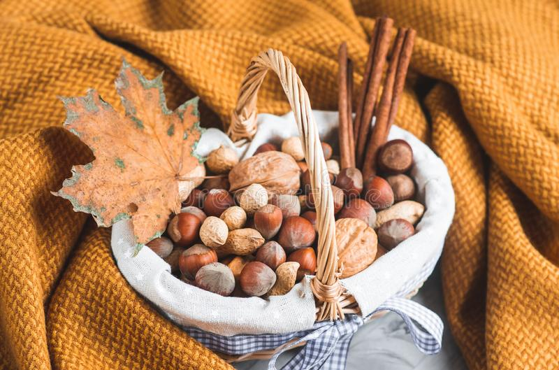 Autumn Concept Basket mit sortiertem Mischnuss-Erdnuss-Mandel-Haselnuss-Kiefern-Niederlassungs-gelbe Decken-gemütlichem gesundem  lizenzfreie stockfotografie