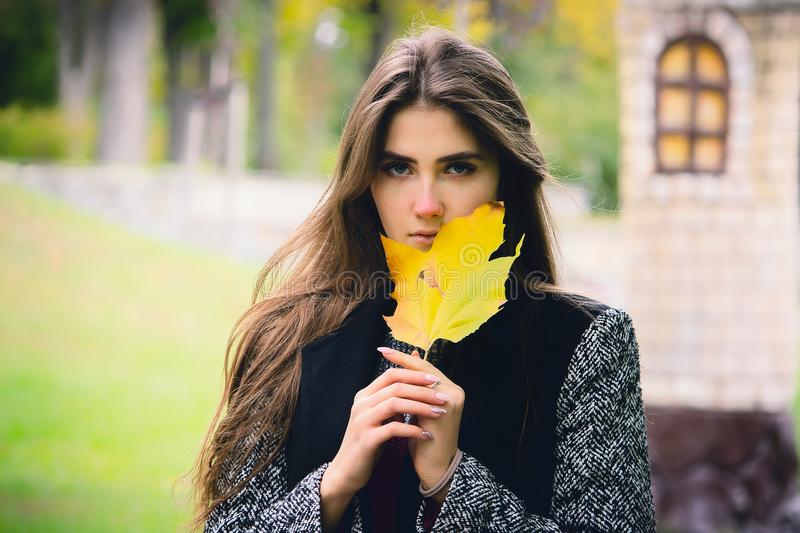 Portrait of a beautiful girl with flowing hair dressed in a black coat, holding a maple leaf in her hands stock image