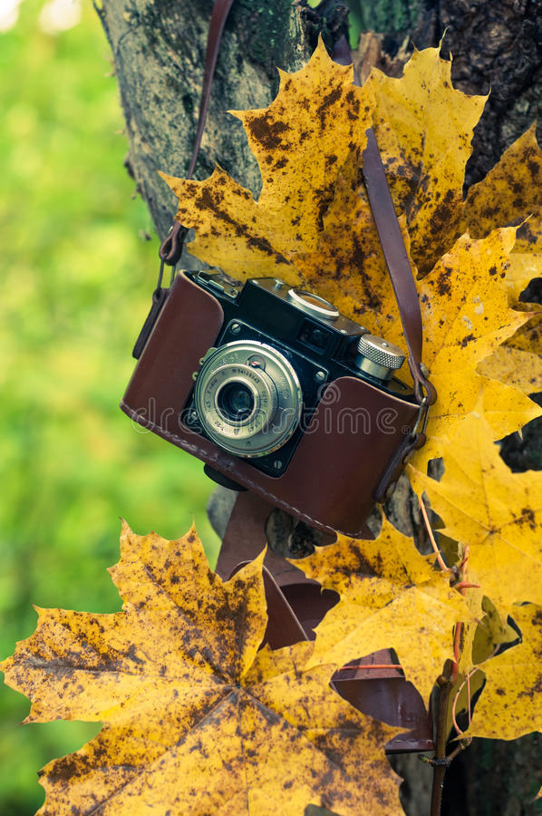Autumn concert, retro camera on a autum background stock photos