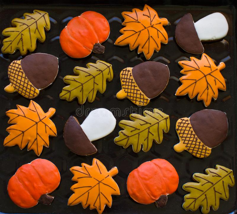 Autumn cookies royalty free stock images