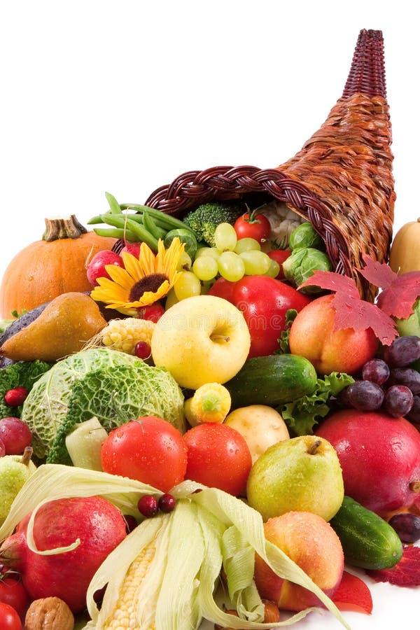 Free Autumn Cornucopia Stock Image - 1436901