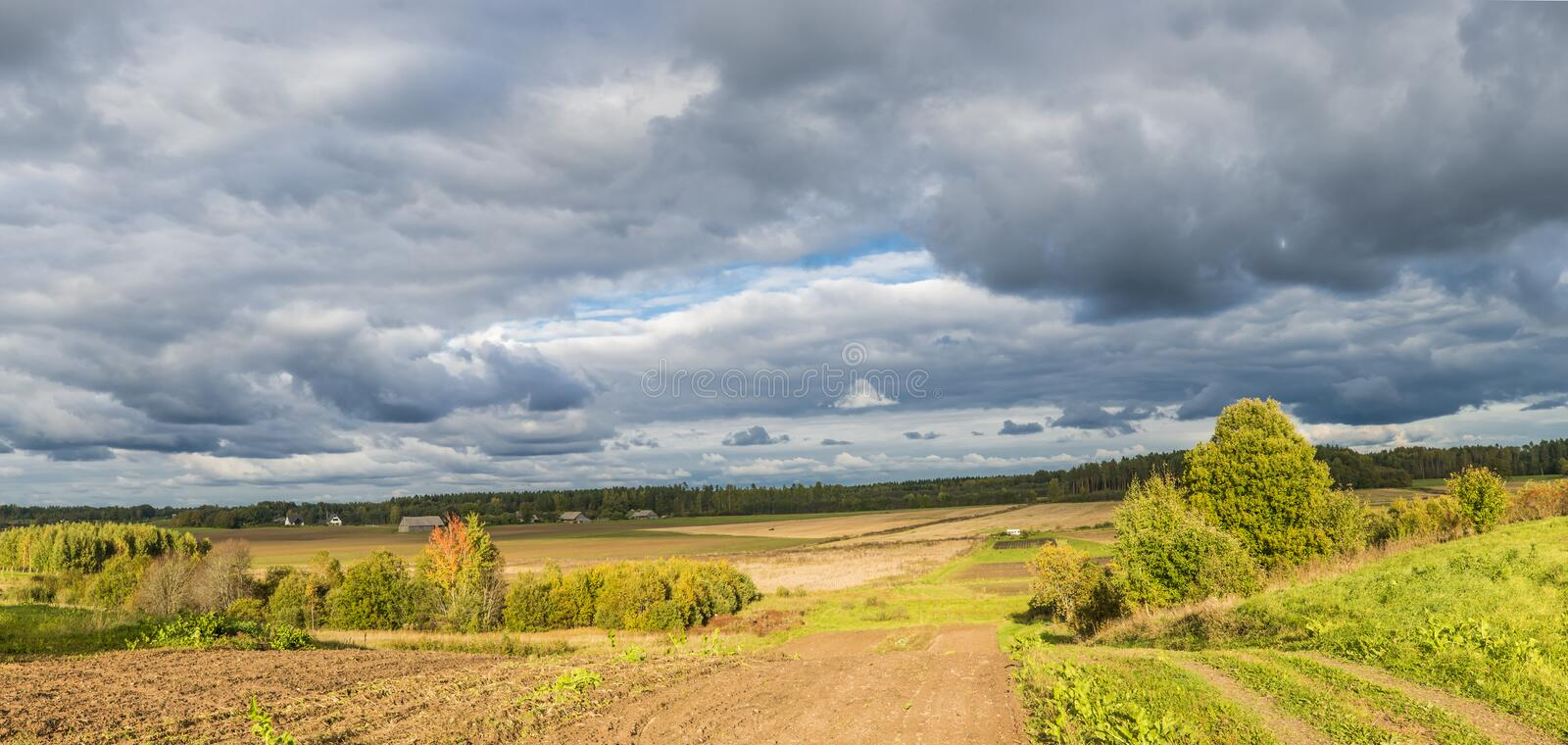 Autumn country road, Latvia. Country road among trees and fields, Latvia royalty free stock photography