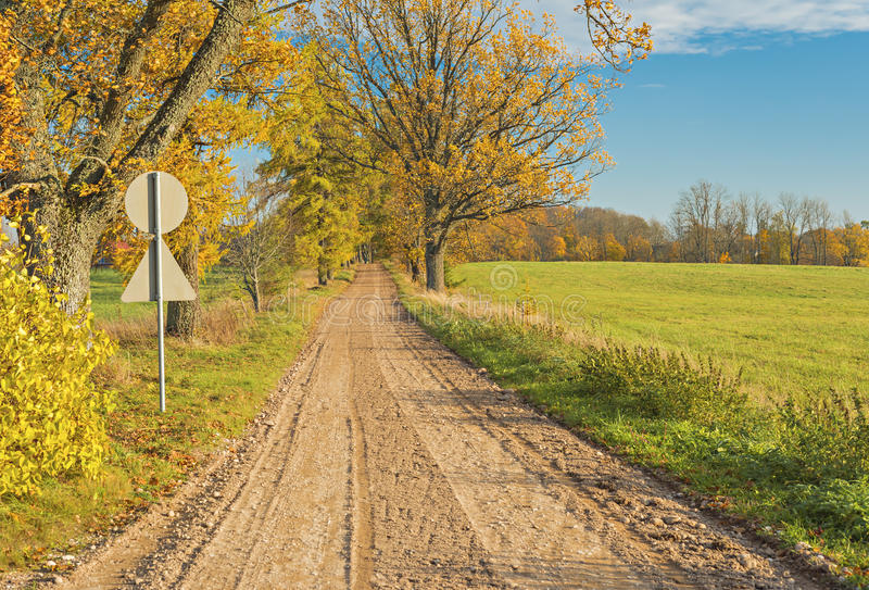 Autumn country road, Latvia. Country road among trees and fields, Latvia royalty free stock image