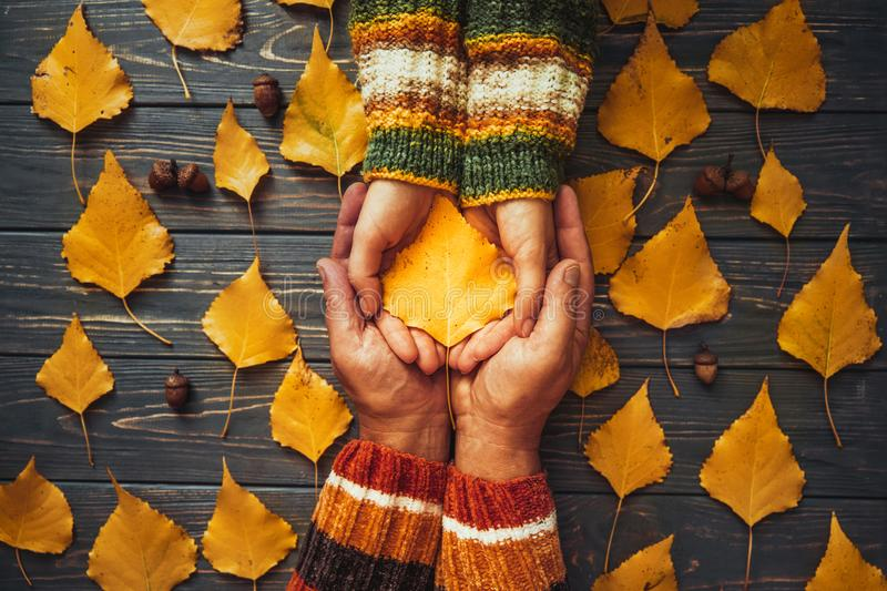 Autumn couple holding yellow ash leaf,embrace hands top view.Autumnal relationship family love concept royalty free stock photography