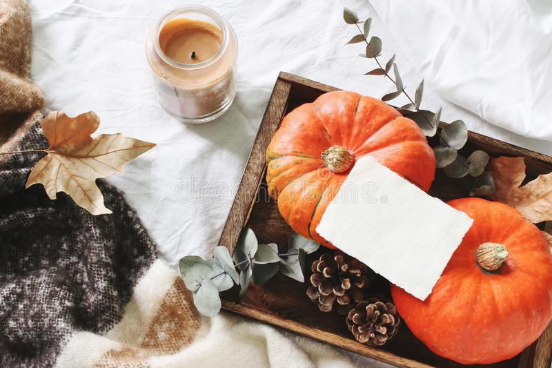 Autumn cozy composition. Blank card mockup scene. Candle, eucalyptus leaves and pumpkins on wooden tray. Wool plaid. White linen fabric background stock images