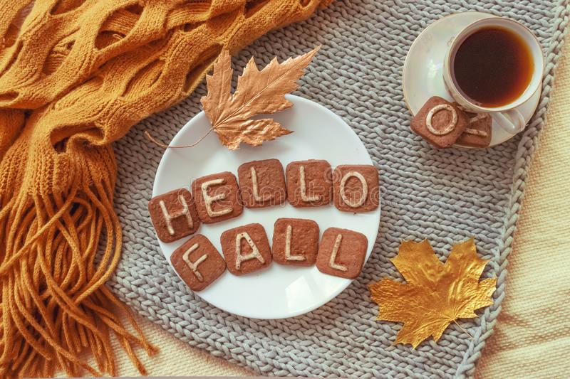Autumn cozy flat lay. Top view. Hot tea cup and round white plate with cookies text HELLO FALL, orange warm scarf and autumn leav royalty free stock photos