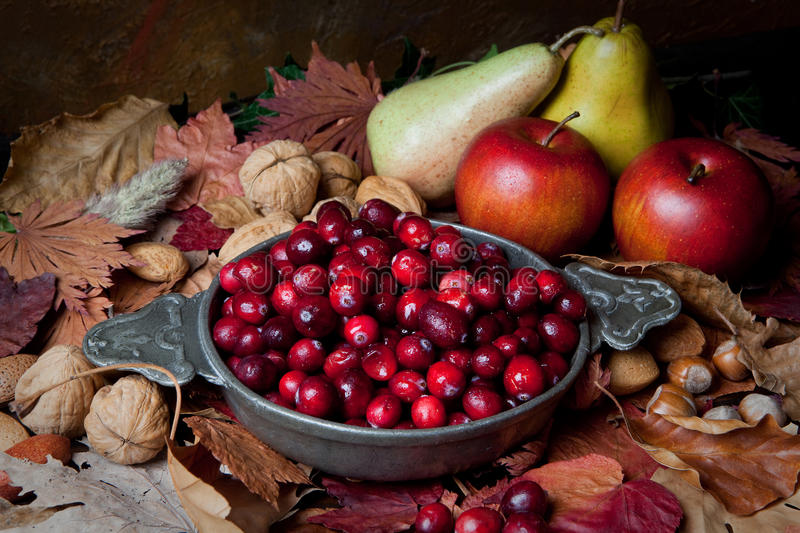 Autumn cranberries and nuts. Thanksgiving still-life with cranberries, autumn leaves, apples and nuts royalty free stock photos